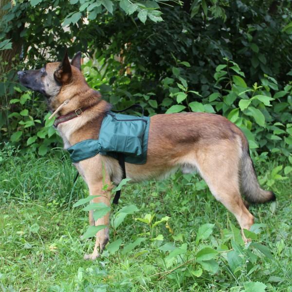 Выгул собаки с рюкзаком кидстафф рюкзак