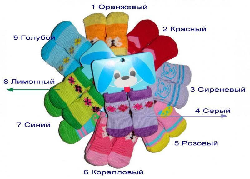 Как связать носочки для той терьера - Одежда для той-терьера