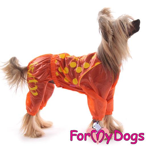 Аксессуары для собак девочек